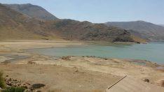 Kayısı Bahçesi Sahiplerine Kötü Haber: Çat Barajında Su Bitti