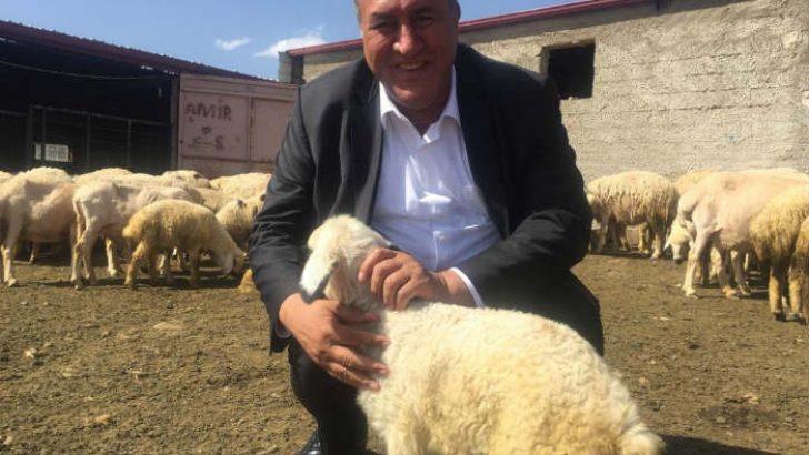 Küçükbaş hayvan yetiştiricileri CHP Milletvekili Gürer'e dert yandı VİDEOLU HABER