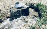 Malatya'da Kanalizasyon suyunu tarımda kullanıyorlar, Video ve Fotoğraflı Haber