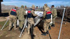 Malatya İl Jandarma Komutanlığı ekipleri Doğanyol ve Pütürge'de çalışmalarını aralıksız olarak sürdürmekte