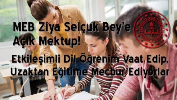 Karşılıklı Dil Eğitimini Çıkarları İçin Uzaktan Eğitime Çeviriyorlar
