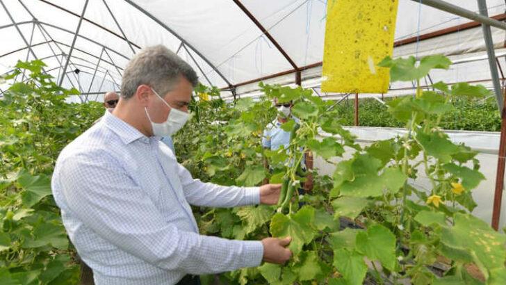 Yeşilyurt Belediyesi Tarımsal Hizmetlerde Büyük Bir Mesafe Kat Etti