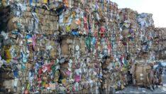 557 Ton Kağıt Karton Ambalaj Atığı Toplayarak 9.469 Adet Ağacın Kesilmesine Engel Olduk
