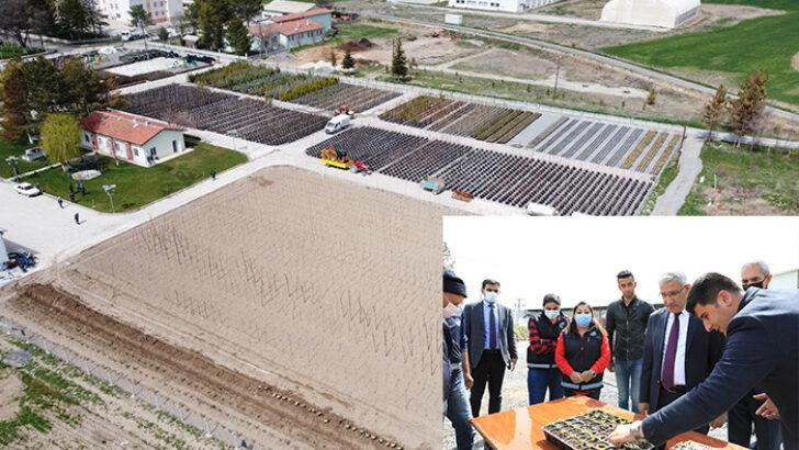 Battalgazi Belediye Başkanı Osman Güder, Özel sera alanında incelemelerde bulundu.