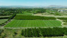 Battalgazi Belediyesi , 22 bin metrekare alan üzerine Rulo Çim Üretim Tesisi kuruldu.